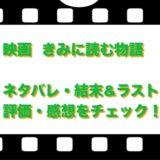 映画  きみに読む物語のネタバレ!結末&ラストと評価・感想をチェック!