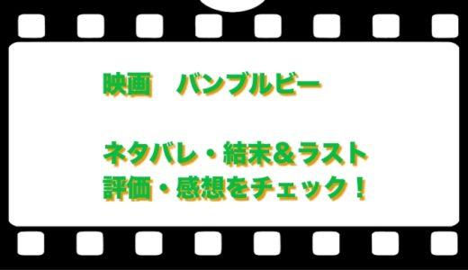 映画  バンブルビーのネタバレと評価・感想!あらすじと結末&ラストをチェック!
